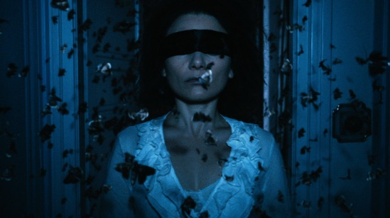Chiara D'Anna as Evelyn in 'The Duke Of Burgundy.'   credit: IFC Films