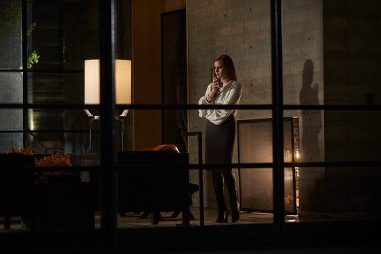 nocturnalanimals_amyadams_focus_features